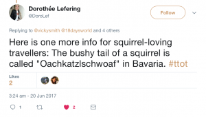 Dorothée's squirrel trivia Tweet